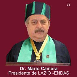 Mario-Camera